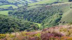 £1m boost for green initiatives in Somerset