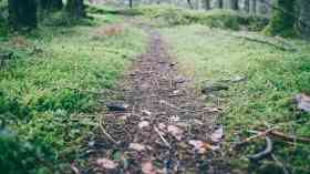 Councils urged to unlock the benefits of nature to society