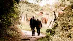 Government 'overlooking the housing needs of older people'
