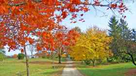 Parks and green spaces need legal protection