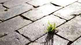 UK acutely vulnerable to environmental breakdown