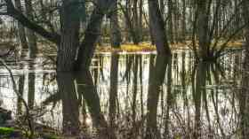 £40 million for better flood protection