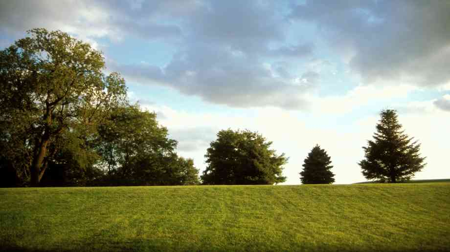 £13m announced for green spaces