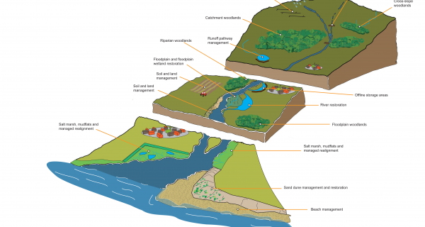 Natural flood management – taking it forward
